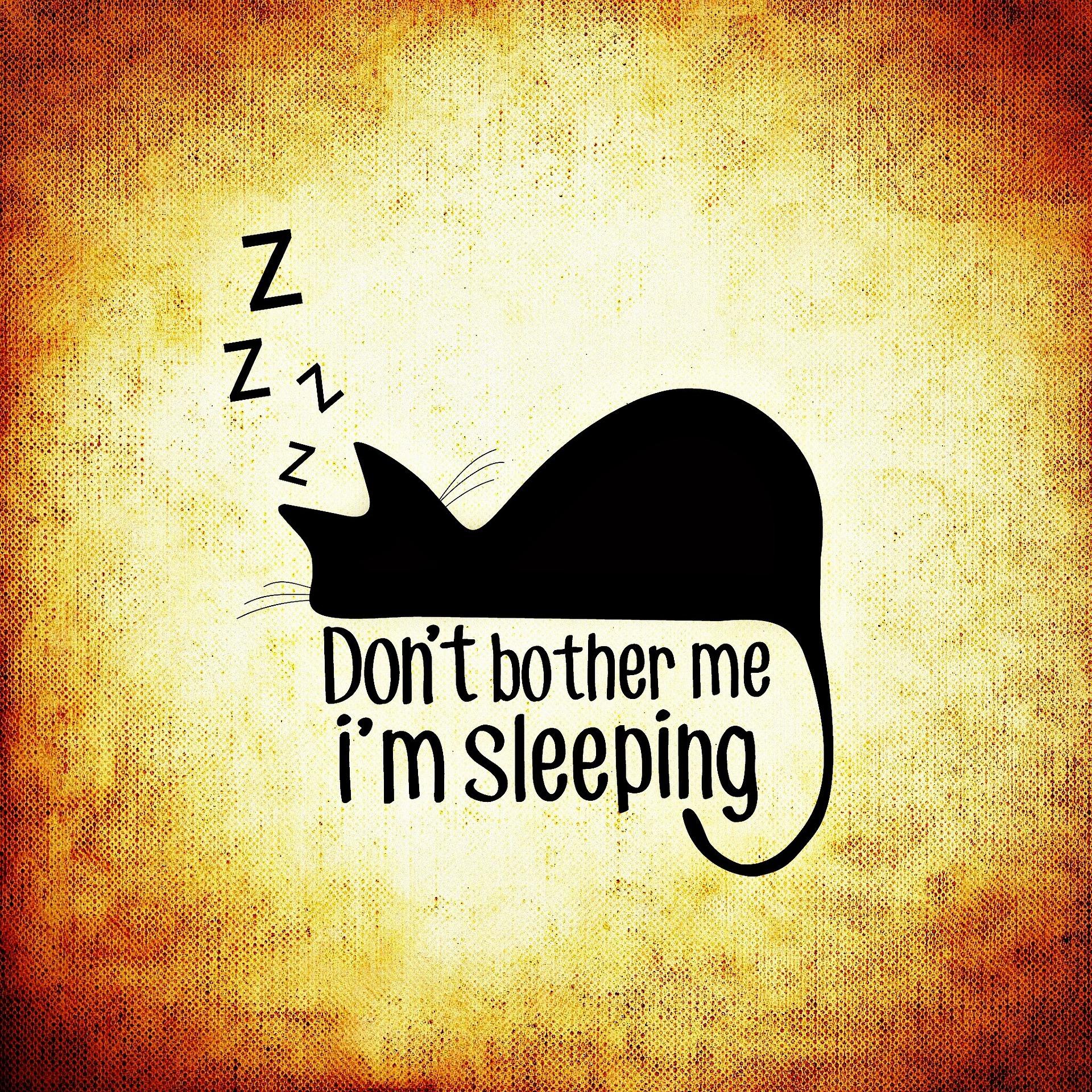 睡眠のメカニズムと睡眠薬